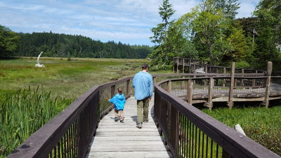 Ilwaco, WA: Boardwalk for wildlife and sculpture viewing