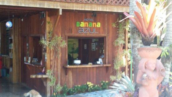 Hotel Banana Azul: Front desk