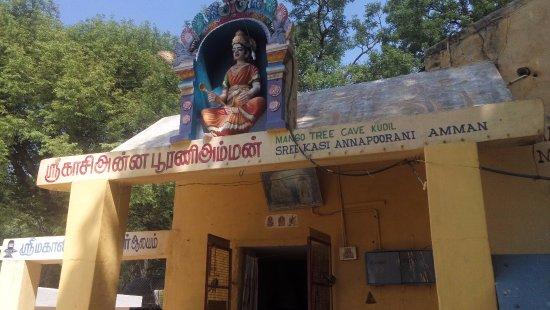 Thiruvannamalai, Indie: Amman temple inside Mango Cave
