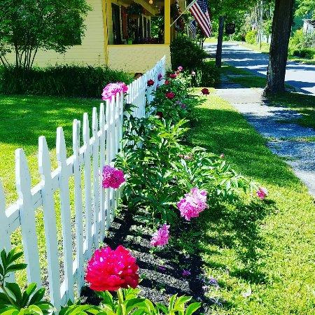 Sharon Springs, estado de Nueva York: Beautiful flowers surround the property