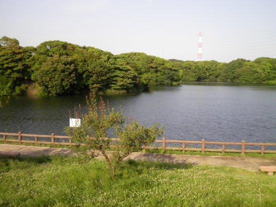 Sori Pond: 佐布里池周辺