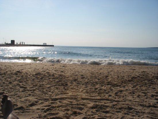 BEST WESTERN PLUS Dockside Waterfront Inn: Beach outside of room