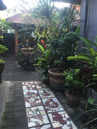 Warung Kacu Guest House: garden