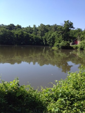 Platte City, MO: The RV park has four private ponds for guest fishing