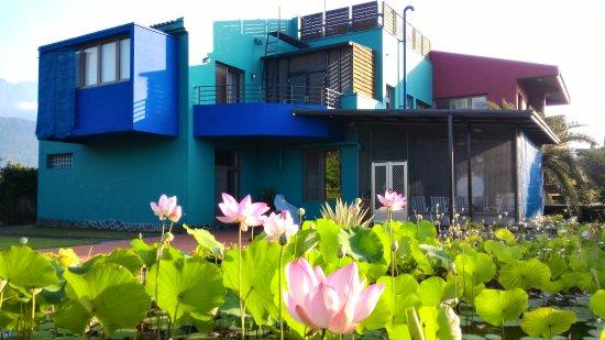 Casa de Angie B&B: 盛夏後院自然生態池