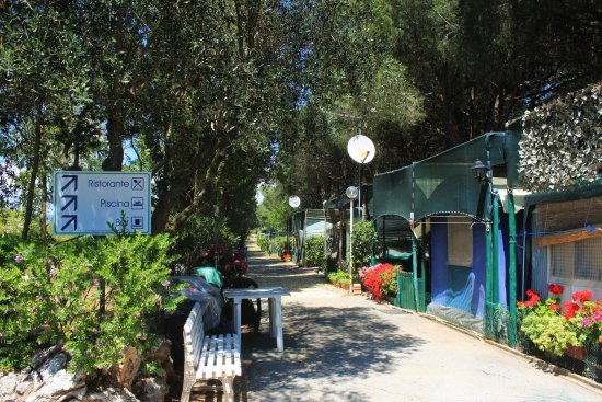 Costa d'Argento Village Club: Camping