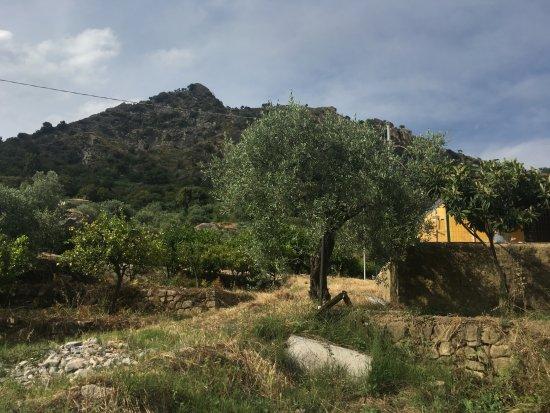Zdjęcie Francavilla di Sicilia