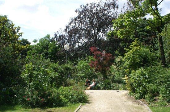 20160806 121749 picture of jardin de la for Jardin a la francaise