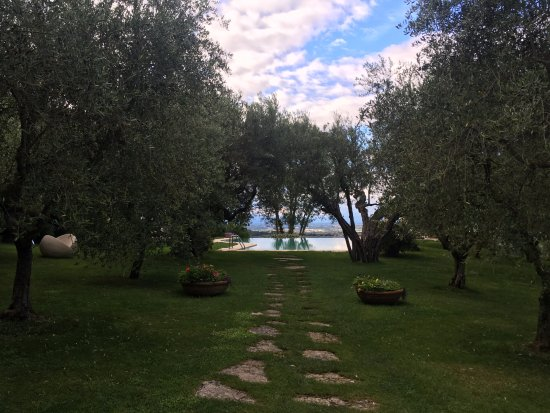 Villa Cicolina Image