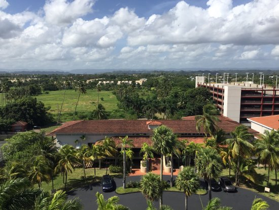 Embassy Suites by Hilton Dorado del Mar Beach Resort: photo2.jpg