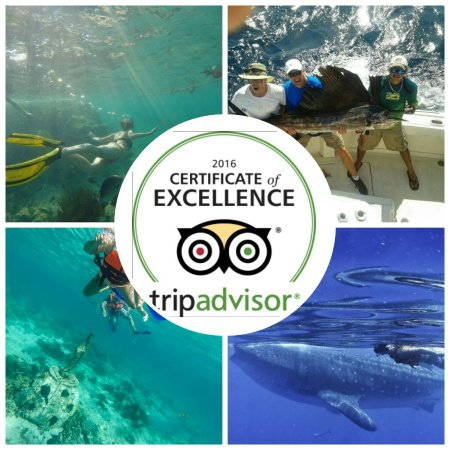 Island Adventures Mexico: Certificate of excellence