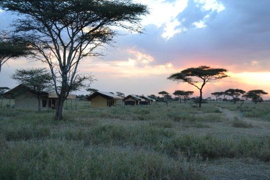 Picture of Serengeti Mawe Tented Camp