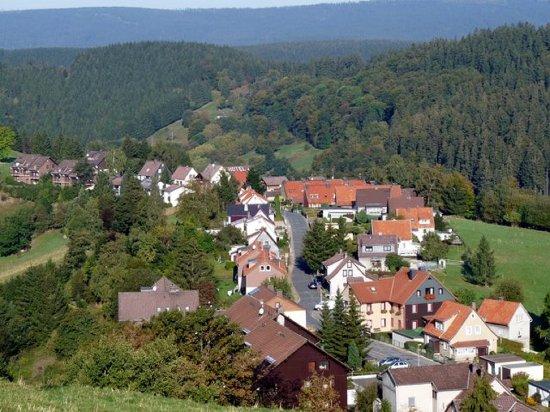 Hotel Waldfrieden: Blick auf die Lage des Hotels