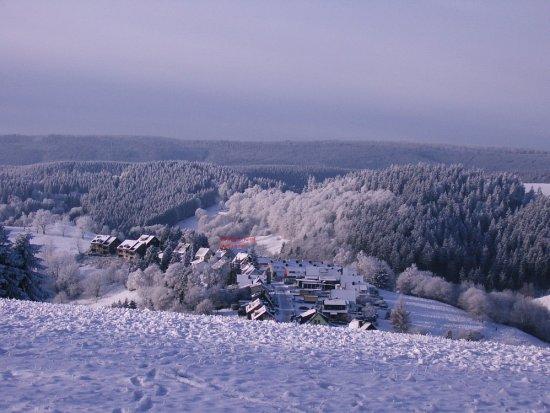 Hotel Waldfrieden: Hotellage Winter