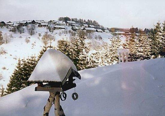 Hotel Waldfrieden: Zimmeraussicht Winter