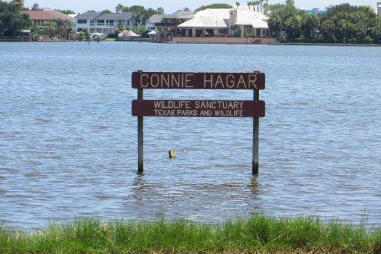 Connie Hagar Wildlife Sanctuary, Rockport, TX