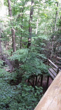 Timberwinds Log Cabins: UP THE CREEK CABIN. Stairs and deck leading to jacuzzi (can't see) and over the stream