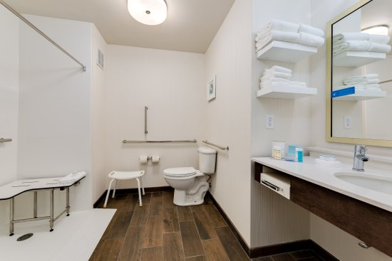 Hampton Inn Niceville-Eglin Air Force Base: Accessible Bathroom