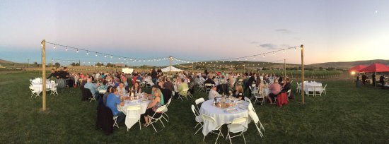 Benton City, Etat de Washington : Annual Harvest Dinner in the Vineyard.