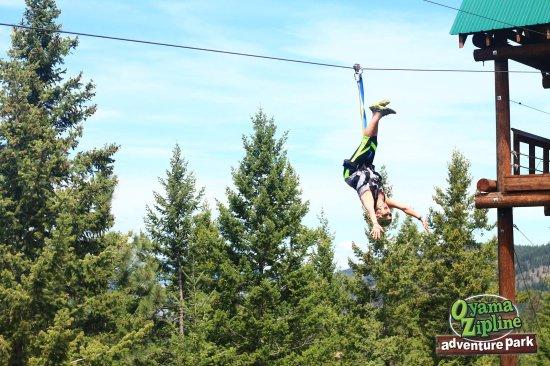 I Am 50 I Can Fly Bild Von Oyama Zipline Adventure Park Lake Country Tripadvisor