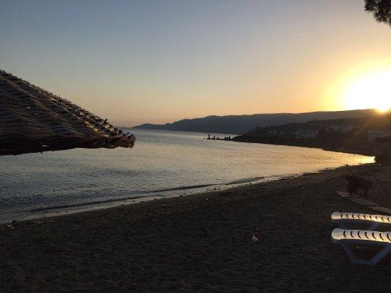 Gemlik, ตุรกี: Esen Doğa Motel - Kumsal