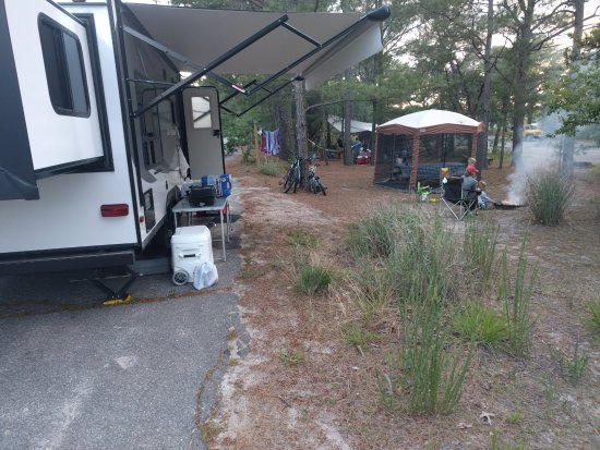 Cape Henlopen State Park: Parallel parking RV camping