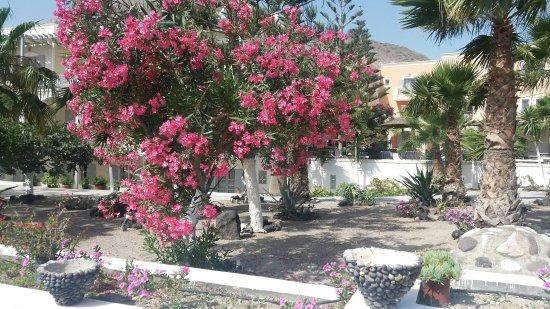 Santa Elena Hotel : 20160620_091725_large.jpg