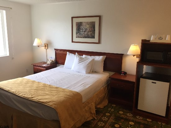 America's Best Value Inn & Suites Eureka: Single Queen