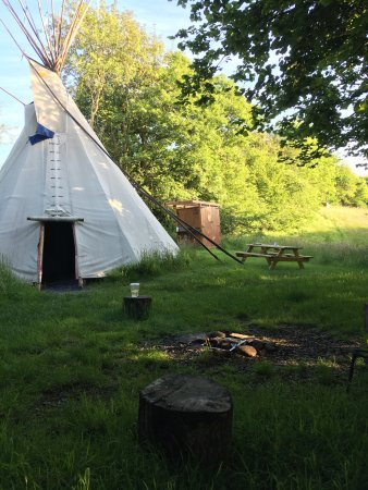 Mid Wales Tipis: photo1.jpg