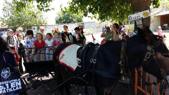 Tres Cantos, Spanyol: paseo en carro