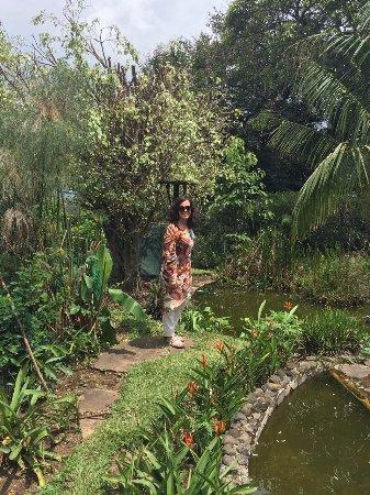 Hotel Desire Costa Rica : paseo por los jardines