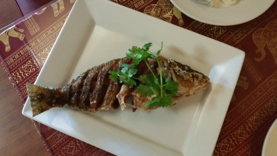 Chai Yo Thai Cuisine: deep fried Ginger Snapper