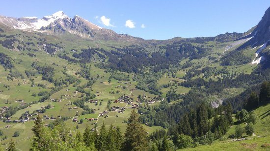 Grindelwald, Switzerland: 20160622_112645_large.jpg