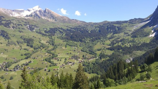 Grindelwald, Switzerland: 20160622_112647_large.jpg