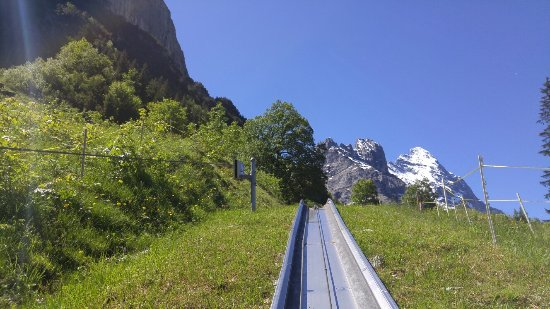 Grindelwald, Switzerland: 20160622_115232_large.jpg