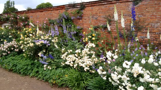 Awesome Mottisfont Abbey: In Full Bloom   Traditional English Garden