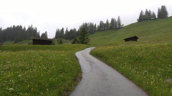 그린델발트, 스위스: 20160621_133156_large.jpg