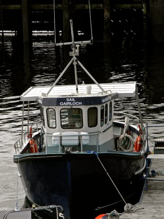 Gairloch Marine Life Centre & Cruises: The boat we went out on
