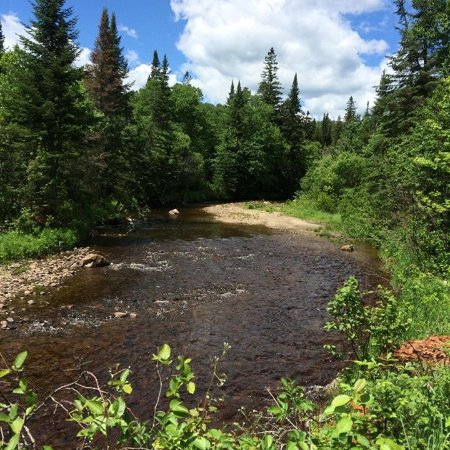 Canaan, VT: A beautiful back stream in the back country