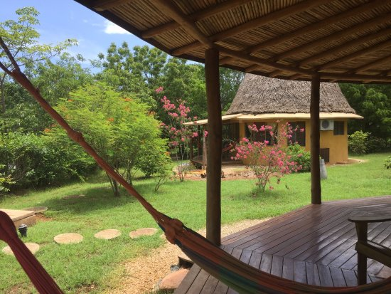 "Hotel Playa Negra: Loved ""hanging"" in these hammocks on our front porch of our bungalow!"