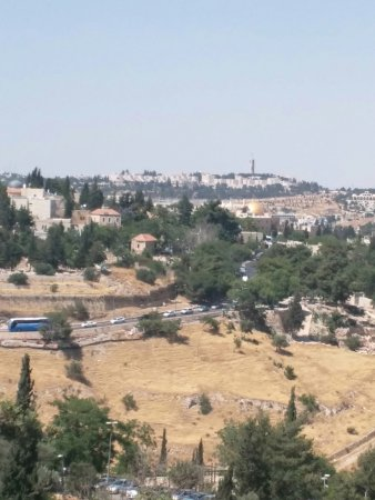 Dan Boutique Jerusalem: This is a zoomed view from our room. You can see the Old City and the famous golden dome.