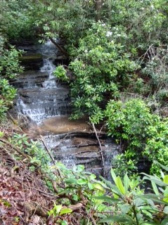 Lakemont, Gürcistan: One of the lessor falls that treated us on the way to Angel Falls at the top of the trail.