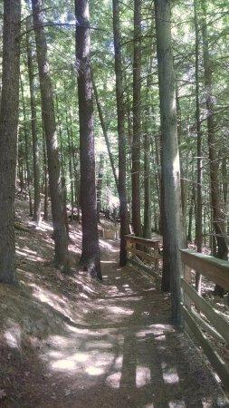 Hartford, VT: Beginning of the trail.