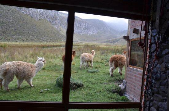 Hosteria Chimborazo