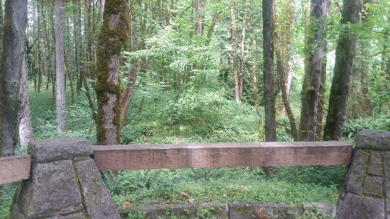 Wilsonville, Oregón: Graham Oaks Nature Park