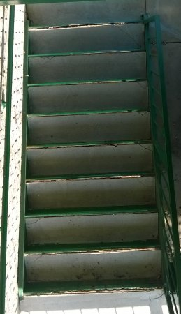 Days Inn Morristown: The stair treds that need repairing.