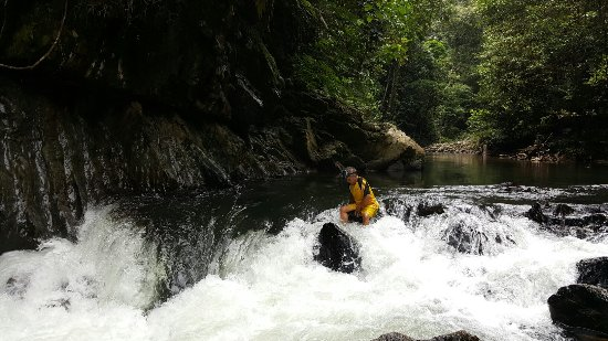 Sarawak, Malaysia: 20160610_115026_large.jpg