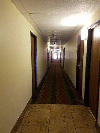 西維吉尼亞州里普利速 8 飯店照片