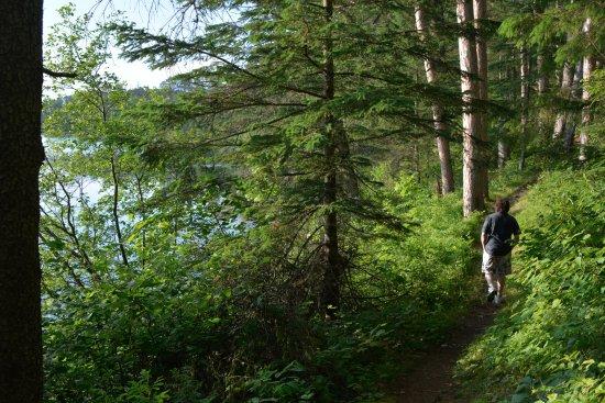 Douglas Lodge : Hiking Trails