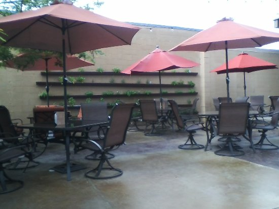 Saint Joseph, MN: Looking at the herb garden on the wall from the patio.